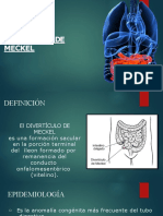 Diverticulectomia y polipectomia