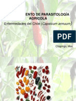 chile diseases.pdf