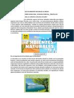 Practica 02_ Alex Lucio Torres Apaza.pdf