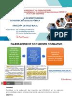PPT Directiva Sanitaria N°100-DSABU