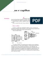Pinos e Cupilhas.pdf