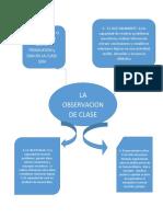 CAPSULA OBSERVACION.docx