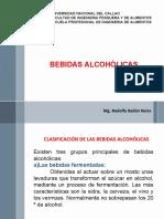 12 BEBIDAS ALCOHOLICAS