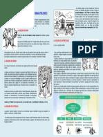 Características de la  Iglesia