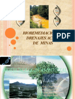 biotecnologiaambientalexpo3fasef-12940229481717-phpapp02-convertido.pptx