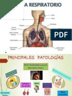enfermedades sistema respiratorio.pptx