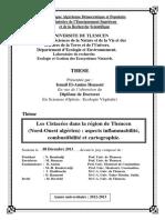Thèse_(Dr._Henaoui_Ismail_El-Amine)