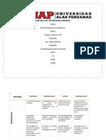 METODOLOGIA trabajo academico n2