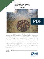 Guía 1NE EJE 1.pdf
