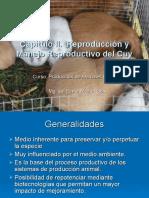 CAPITULO II Aspectos y manejo reproductivo del cuy