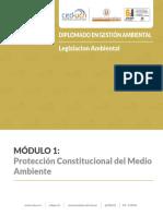M1_03_Protección Constitucional del Medio Ambiente