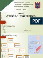 musculo esqueletico eq6.pptx