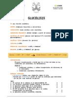 Glucolisis Ficha de Aprendizaje Ok
