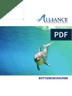 AMMPA-DolphinFactSheet-FINAL-Web