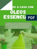 Limpando a Casa com Oleos Essen - Empreendendo Cosmetico