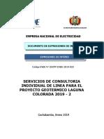 cdcpp-ende-2019-023-consultores-de-linea-proyecto-geotermico-laguna-colorada-2019-2.pdf