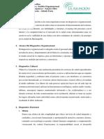 Actividad 3 Analisis y Diagnostico Organizacional