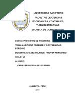 AUDITORIA FORENSE.docx