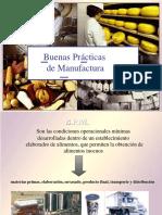 BPM-POES- AyCA 2020.pdf