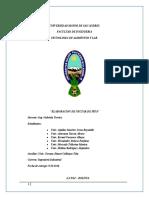 INFORME NECTAR DE PIÑA2