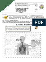 Taller 9 Partes-del-Sistema-Respiratorio-para-Tercero-de-Primaria