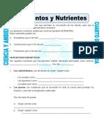 Ficha-Alimentos-y-Nutrientes-para-Cuarto-de-Primaria