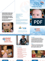 LVCC Infant / Toddler Brochure