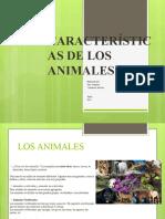 CARACTERÍSTICAS DE LOS ANIMALES