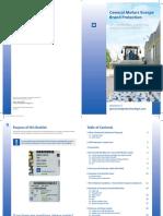 Brand Protection Brochure 2016 engl final310316.pdf