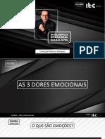 INTELIGENCIA EMOCIONAL INABALÁVEL.pdf