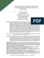 Recuperação de matas ciliares- sistemas de formação de floresta nativa em propriedades familiares- resultados preliminares.pdf