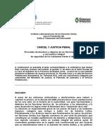 Informe ILANUD.doc