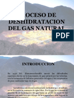 315293786 Proceso de Deshidratacion Del Gas Natural 2 Ppt