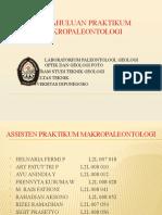 Pendahuluan Prak Makropaleontologi 2010