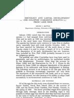 Goldfish Desarrollo Embrionario PDF