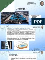 Metalurgia II Semana 7 Lixiviacion Bacteriana minerales sulfurados