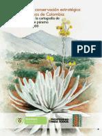 Aportes a la conservación estrátegica de los pármos de Colombia- actualización de la cartografia de los complejos de paramo