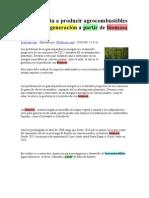 Chile apuesta a producir agrocombustibles de segunda generación a partir de biomasa forestal