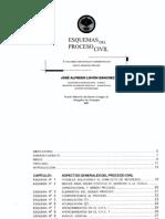 Esquema del Proceso Civil y Guía para revisar Expediente