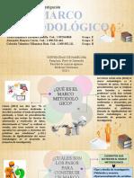DIAPOSITIVAS MARCO METODOLOGICO MDLI