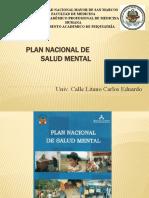 PLAN NACIONAL DE SALUD MENTAL minsa 2018