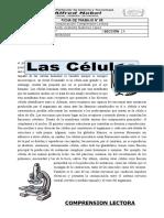 FICHA__N°_05_LAS_CELULAS_5°[1].docx