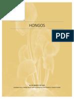 4.HONGOS