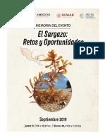 Sargazo_Memoria_Electronica.pdf
