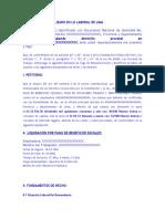 385565879-Demanda-de-Beneficios-Sociales (1)