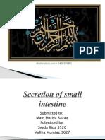 Secretion of small intestine.pptx