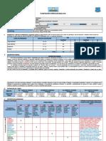 PLANIFICACIÓN CURRICULAR ANUAL 2019 - NSC.docx