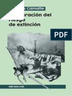 Jacques-Camatte-Instauración-del-riesgo-de-extinción-2020.pdf