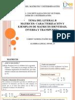 Ejercicio 1 Conceptualización de vectores, matrices y determinantes..pptx