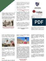 TRIPTICO DE CARITAS EN EL PERU